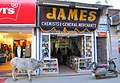 Bull @ James Chemist Shop (5278741534).jpg