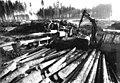Bundesarchiv Bild 183-1984-0207-304, Schleiz, Holzhalde, Entastungsmaschine.jpg