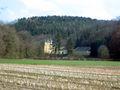 Burg Strauweiler, Odenthal, Germany (2005-03-26).jpg