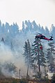 California National Guard help battle the Rim Fire near Yosemite 130829-A-YY327-164.jpg