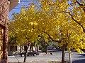 Calle Anzorena y Roque S Peña GC - 1.jpg