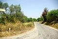 Camí de la Font del Carbonell.jpg