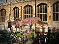 Cambridge UK - panoramio (2).jpg