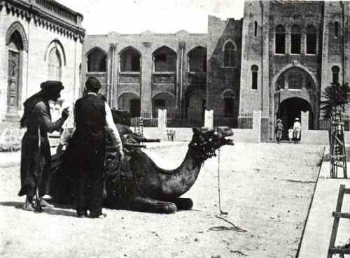 Camel Taxi Station