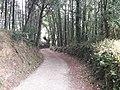 Camino Primitivo, Nadela.jpg