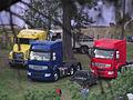 Camiones Renault desde muy lejos (10482661786).jpg