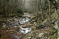 Camp Creek State Park - Campbell Falls WV 4 LR.jpg