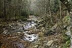 Camp Creek State Park - Campbell Falls WV 4 LR.jpg