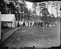 Camp scene, headquarters, Army of the Potomac, Brandy Station, winter of 1864. (4153838210).jpg