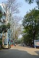 Campus Road - Jadavpur University - Kolkata 2015-01-08 2381.JPG
