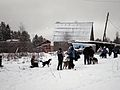 Canis Therapy in Karelia Russia.jpg
