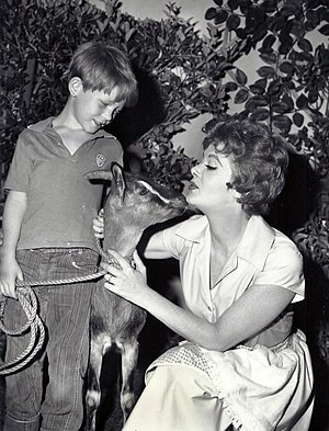 Ron Howard - With Cara Williams in Pete and Gladys in 1960