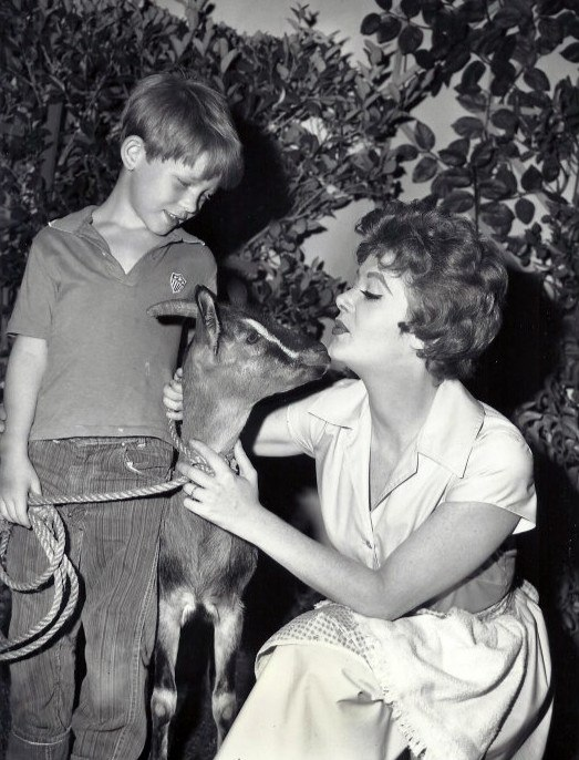 Cara Williams Ron Howard Pete and Gladys 1960