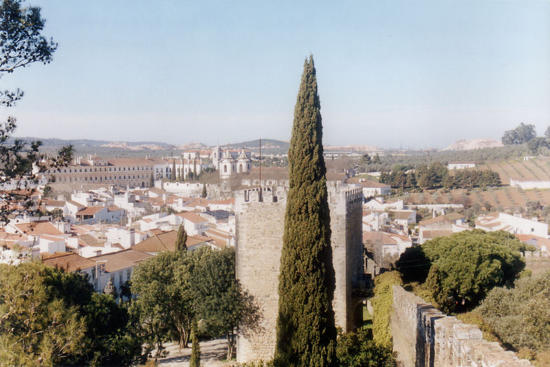 Image:Castelo Vila Vicosa1.jpg