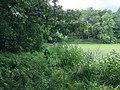 Central Park, New York, NY, USA - panoramio (8).jpg