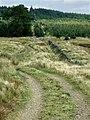 Cerdded Bro Nedd, Sarn Helen Roman Road - geograph.org.uk - 975922.jpg