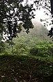 Cerro la vieja, Chiguirí Arriba.jpg