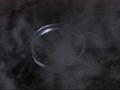 Cesium & water (2537801111).png