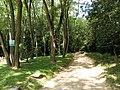 Cesta na katarínku - panoramio.jpg