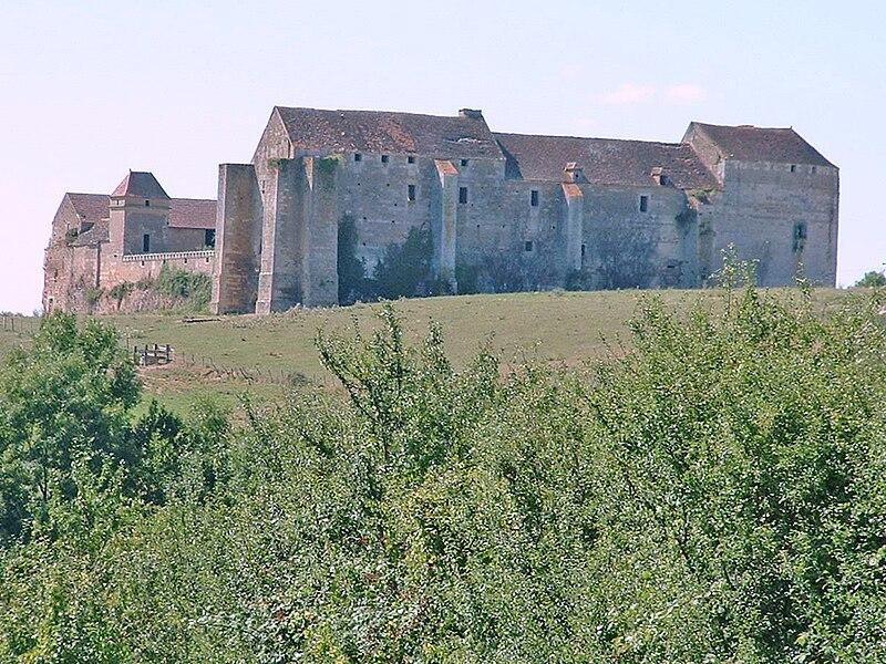 Chateau du Pizy sur wikipedia