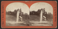 Champion Sprouting Spring, Saratoga N.Y, from Robert N. Dennis collection of stereoscopic views.png