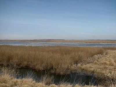 Vista of marshland, with ditch in foreground, brush in middle distance, blue water in far middle distance, shallow hills on horizon, and clear blue sky