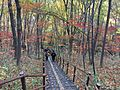 Chiaksan Trail.jpg