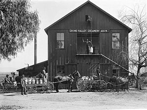 Chino, California - Chino Valley Creamery, c.1900