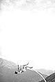 Chloé Moglia - suspension 16.jpg