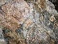 Clast-rich mixtite (Coleman Member, Gowganda Formation, Paleoproterozoic, ~2.3 Ga; Percival Lake roadcut, Ontario, Canada) 26 (47727383761).jpg