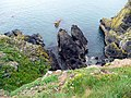 Cliffs below the Southern Upland Way - geograph.org.uk - 916794.jpg