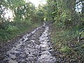 Coalpit Lane after heavy rain - geograph.org.uk - 1582850.jpg