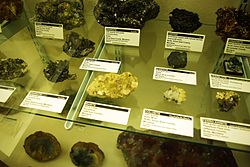 Rows of rock specimens in display case, labelled