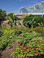 Como Park Zoo and Conservatory - 28.jpg