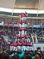 Concurs de Castells 2008 P1220467.JPG