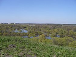 Confluence of Desna and Bolva in Bryansk.JPG