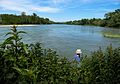 Confluent Garonne-Ariège - 05 - 2016-05-21.jpg
