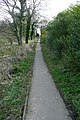 Constitution Hill footpath - geograph.org.uk - 1204459.jpg