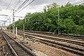 Corbeil-Essonnes - 2019-09-05 - IMG 3007.jpg
