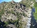 Corsica - Ponte Novu-Ponte Leccia train - Golo river - panoramio.jpg
