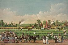 Plantations in the American South - Wikipedia
