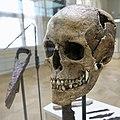 Cultural History (historisk) Museum Oslo. VIKINGR Norwegian Viking-Age Exhibition 14 Grave find Nordre Kjølen, Solør. Sword Spear Axe Arrows Skull (woman 155 cm 18-19 years old. Female warrior? Kvinnelig kriger?) Late 10th c. 4749.jpg