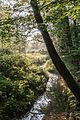 Dülmen, Naturschutzgebiet -Franzosenbach- -- 2014 -- 0184.jpg