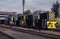 D9516 at Loughborough.jpg