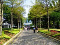 Daan Park Northeast Entrance.jpg