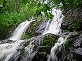 Dark Hollow Falls.jpg