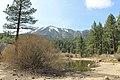 Davis Creek Park - panoramio (16).jpg