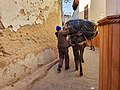 Delivery by mule in Medina of Fez.jpg