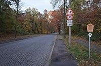 Dessau-Roßlau, Ziebigk, Lindenallee in Elballee.jpg