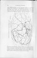 Die Klimate der geologischen Vorzeit 090.pdf